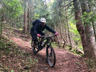 foresty descent mountain bike